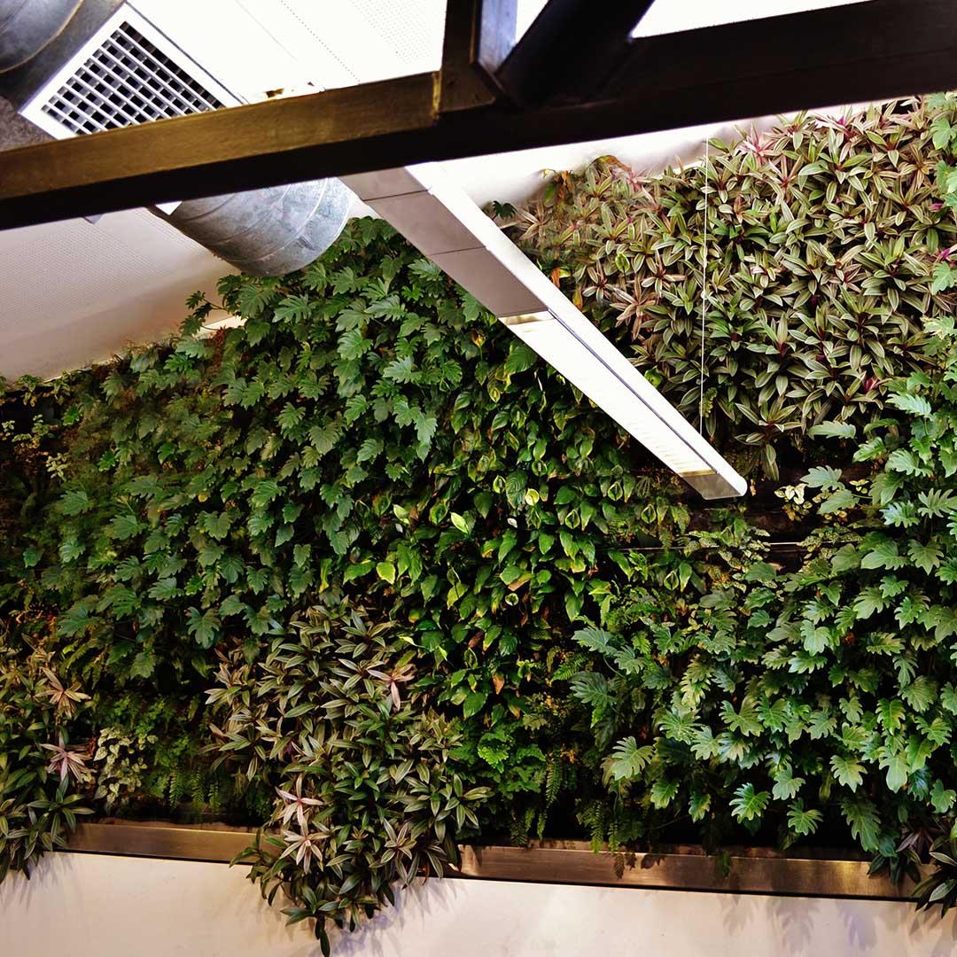 livingwall air con