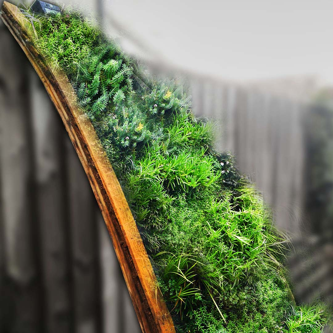livingwall dome