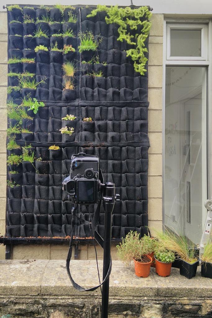 livingwall install wales