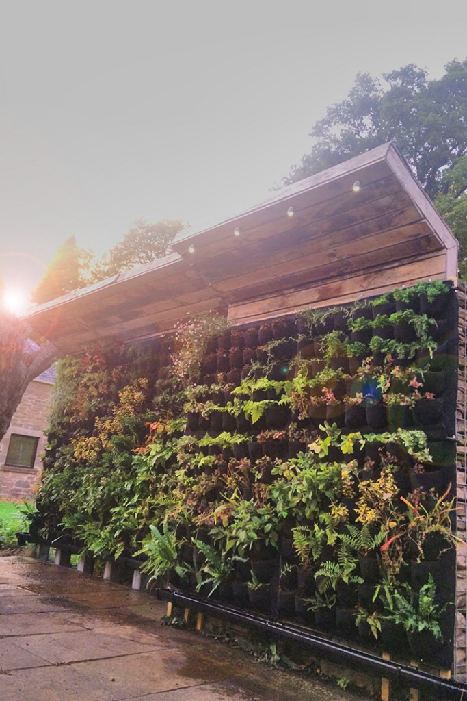 Livingwall Greenwall Vertical Garden in Scotland